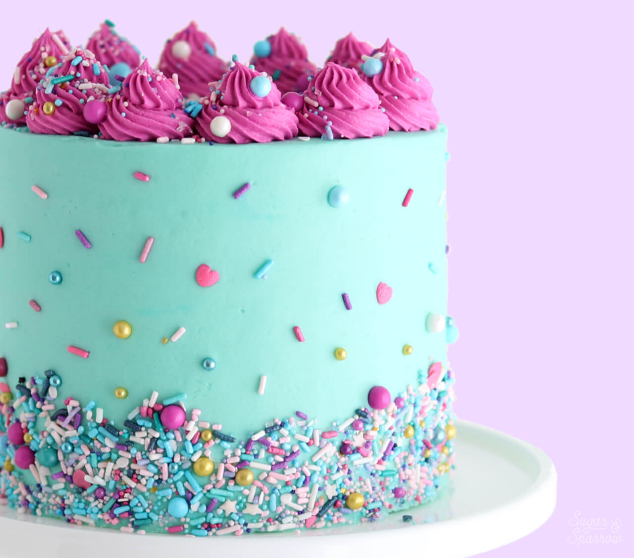 sprinkle cake tutorial by sugar and sparrow