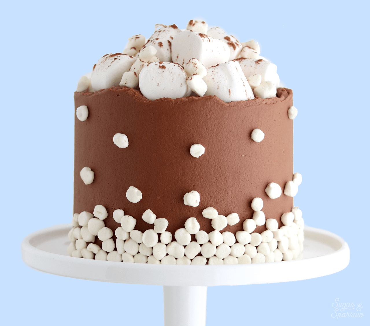 hot cocoa cake recipe by sugar and sparrow