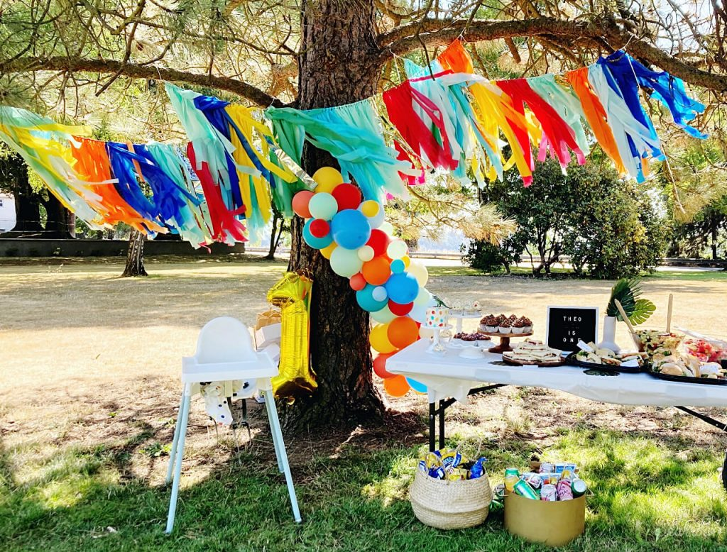 first birthday party in the park